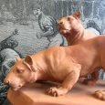 French 1940s Terracotta Figure of two Lionesses