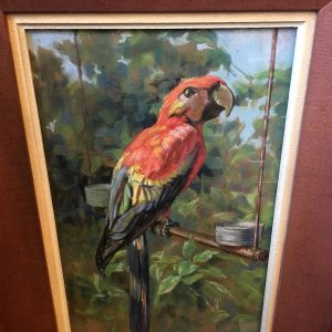 Original French Framed Pastel of a Macaw
